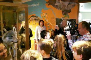 Expositie 'De wolf in Drenthe' feestelijk geopend!